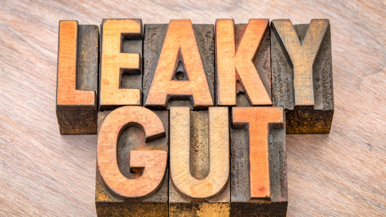 Chiropractic Care for Leaky Gut Dysfunction